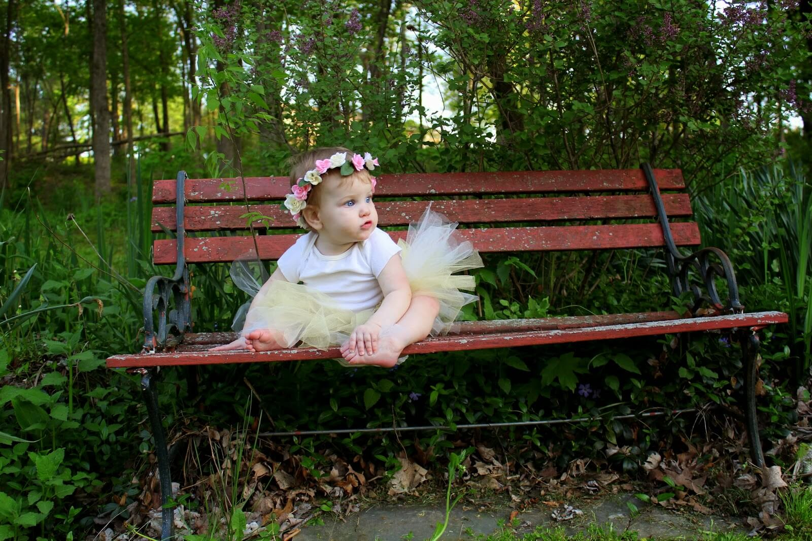 evangeline on bench