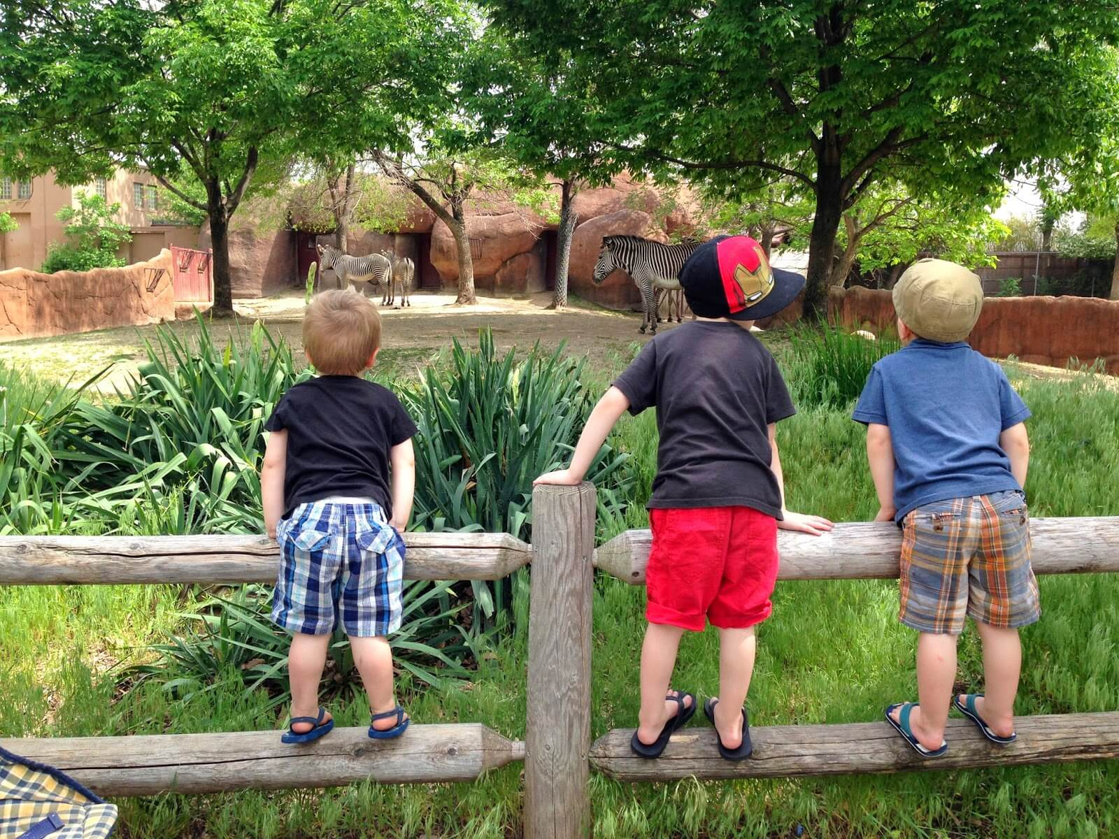 3 boys standing on fence
