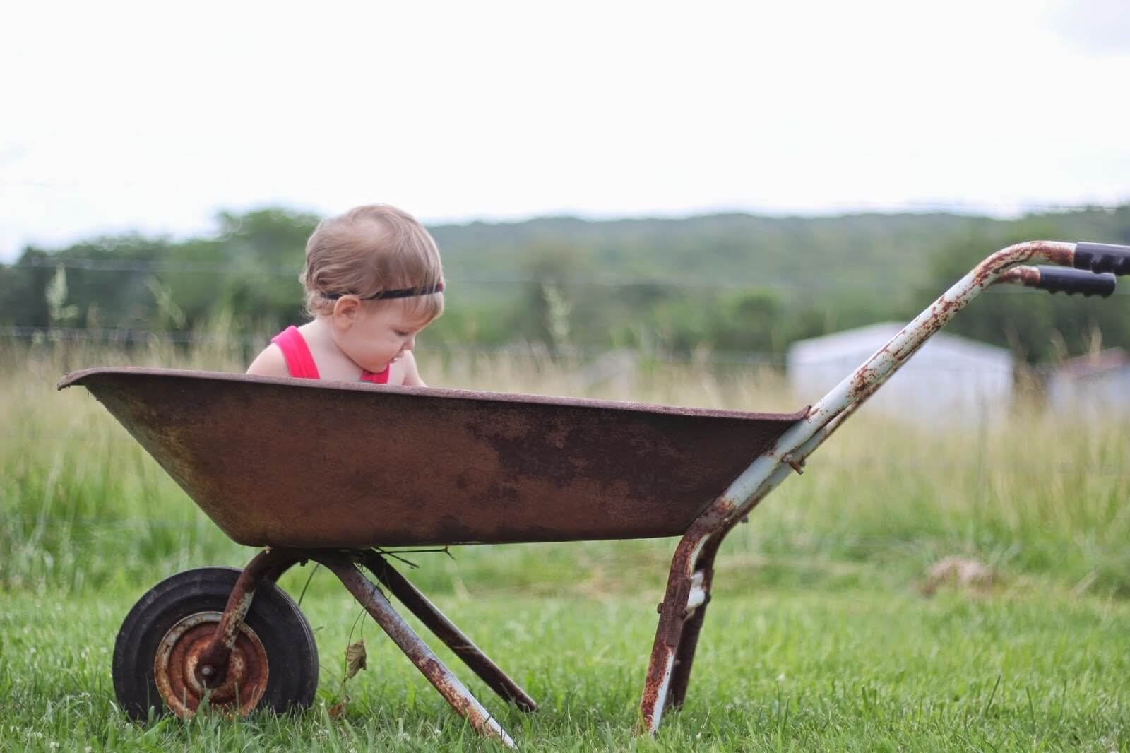 evangeline in wheelbarrow 2