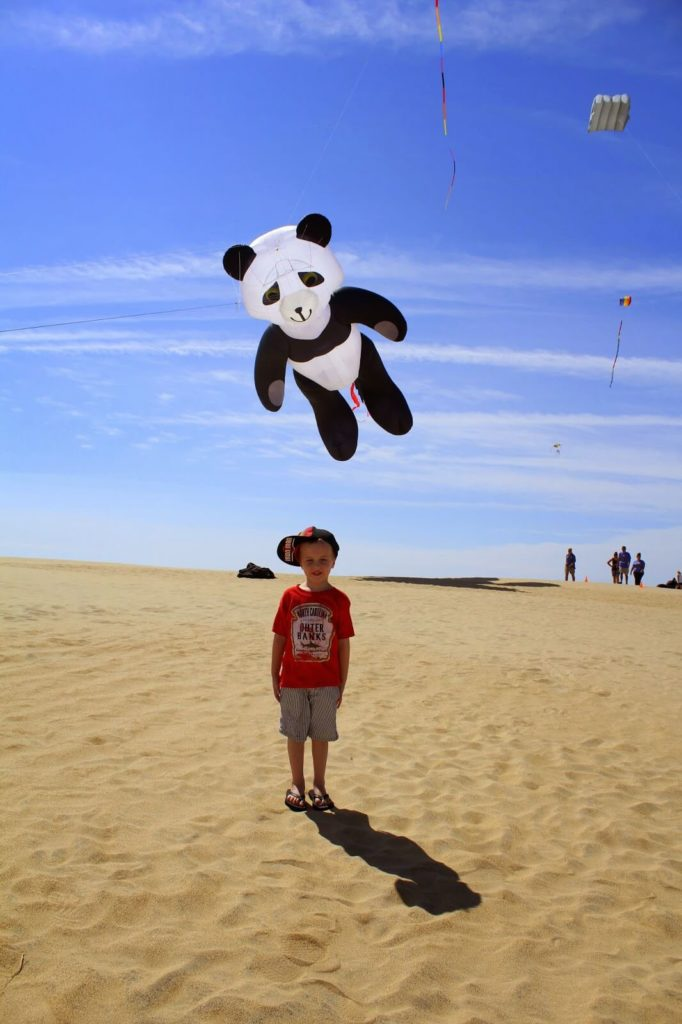 boy and cool kites