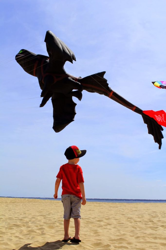 boy watching dragon kite