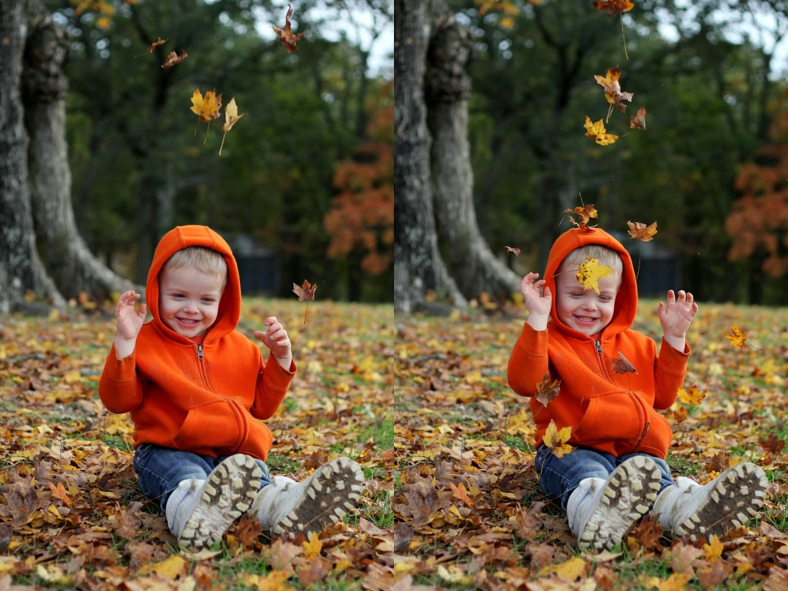 cute toddler boy sitting in leaves and laughing