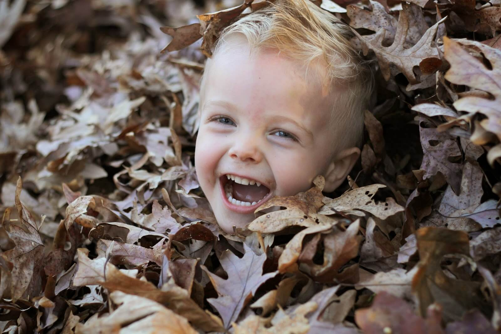young boy totally covered up by leaves