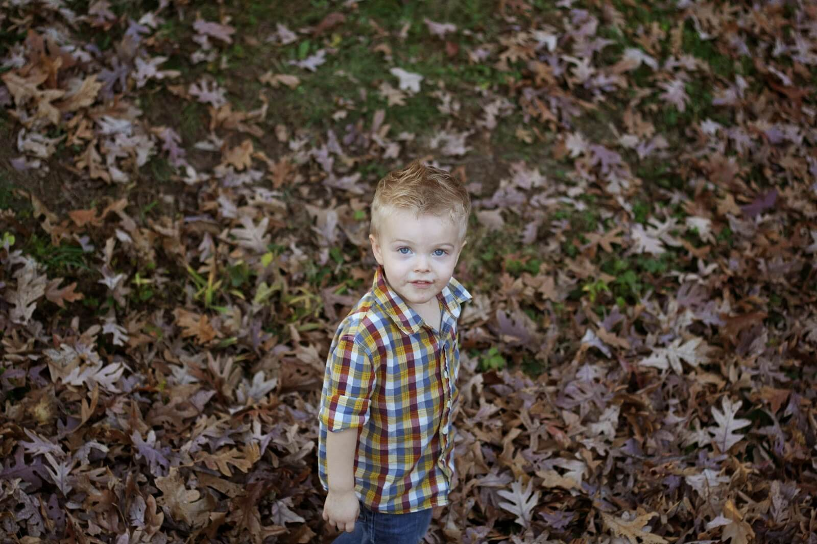 boy standing in leaves