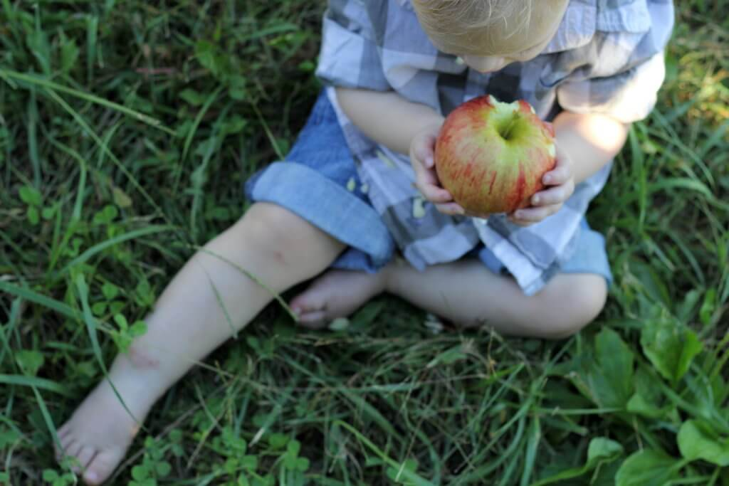 baby boy holding and eating an apple