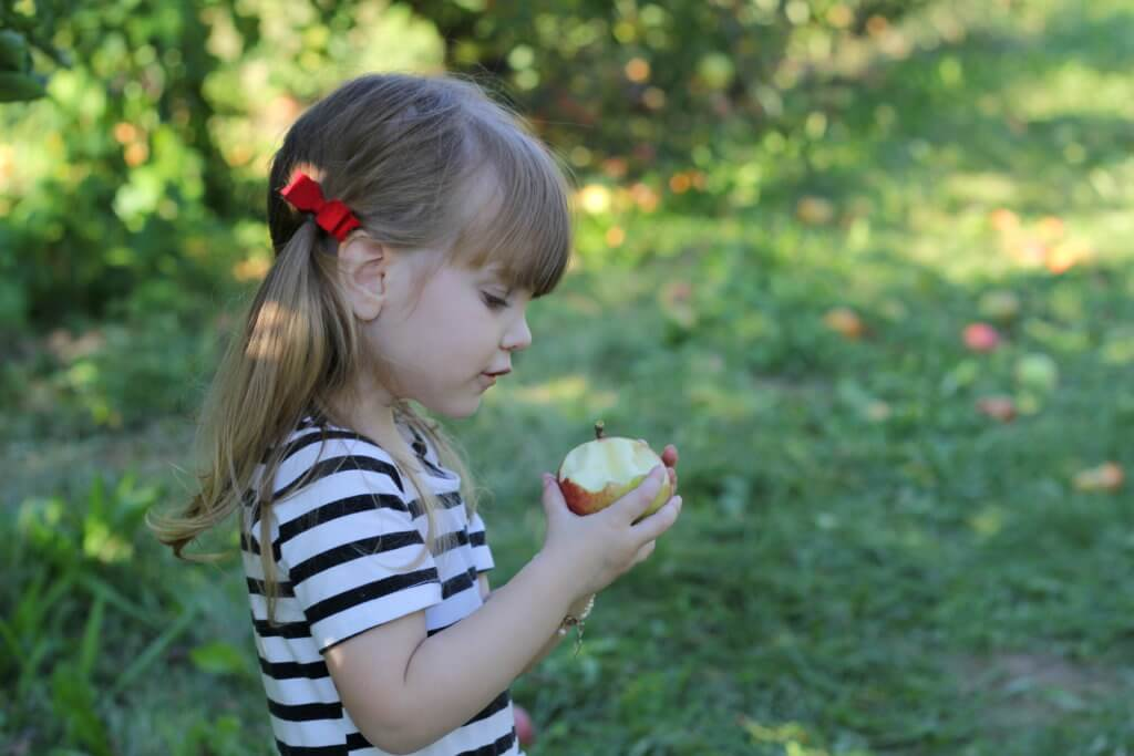 little girl looking at apple