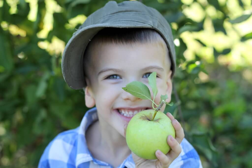 boy holding a green apple