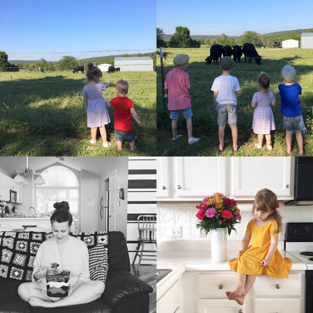 kids looking at cow, eating cake and colorful flower bouquets